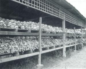 cambodia-_skull